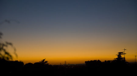 bastet's view